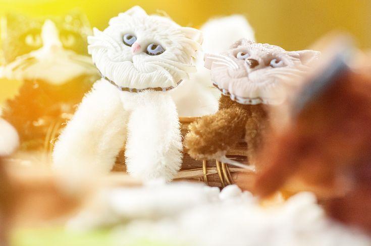 Pfeifenputzer Katzen | Bastelzentrum Bern