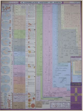 a look at earths geological history History of life on earth  geological timeline  geologists have organised the history of the earth into a timescale on which large chunks of time are called periods and smaller ones called.