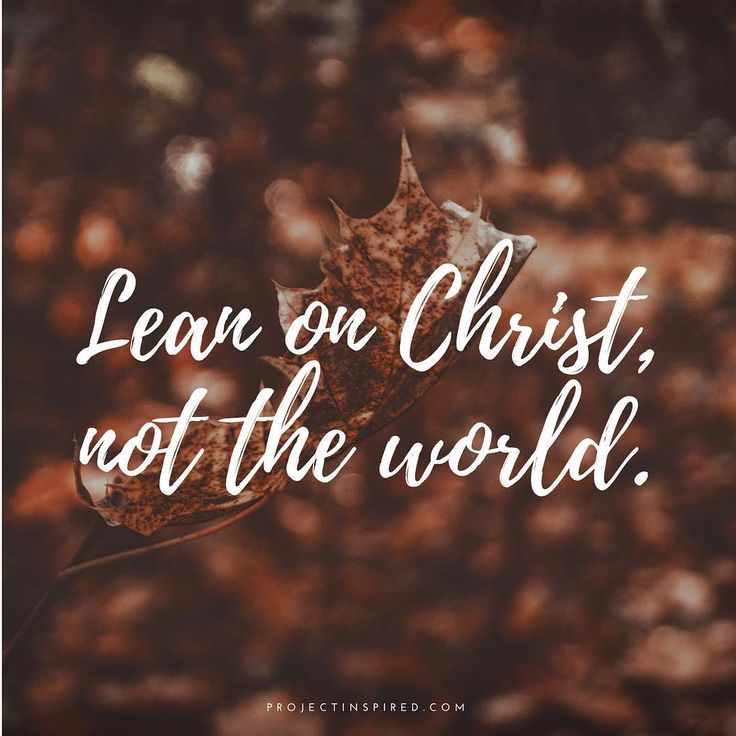 Lean on Christ not the world
