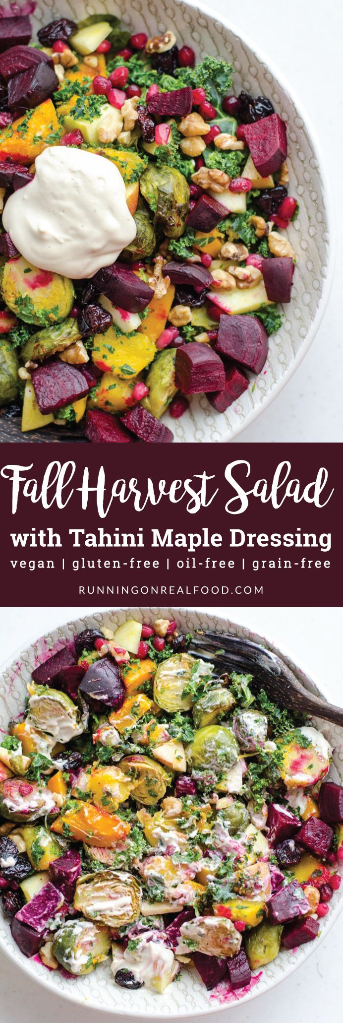 This beautiful, vegan Fall Harvest Salad with Tahini Maple Dressing features all the best Fall ingredients: brussel sprouts, squash, kale, beets, pomegranate, cranberries and apple. Gluten-free, oil-free.