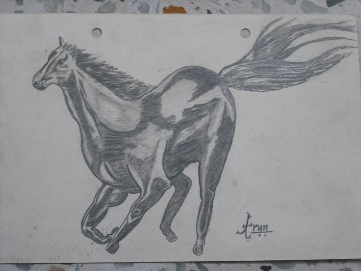 My Drawing with  Pencil.
