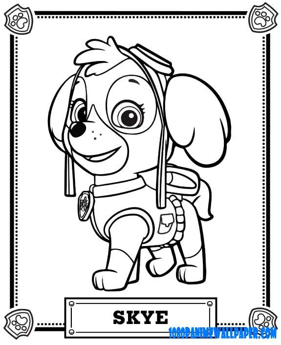 paw patrol | PAW PATROL colouring pages