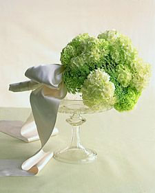 Green flowers are refreshing, fun, and unexpected in combination with other more traditional colors, or on its own.: Wedding Inspiration, Queen Anne S, Wedding Bouquets, Wedding Ideas, Wedding Flowers, Green Hydrangea, Green Flowers, Green Weddings, Queen Annes Lace