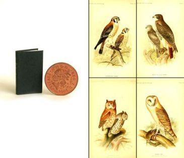 Victorian Book of Hawks and Owls - YES