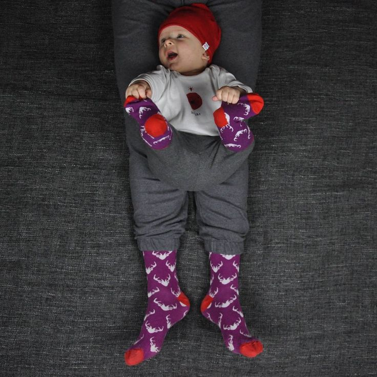 Lovely violet socks for dad and son / Świetne fioletowe skarpetki dla taty i synka