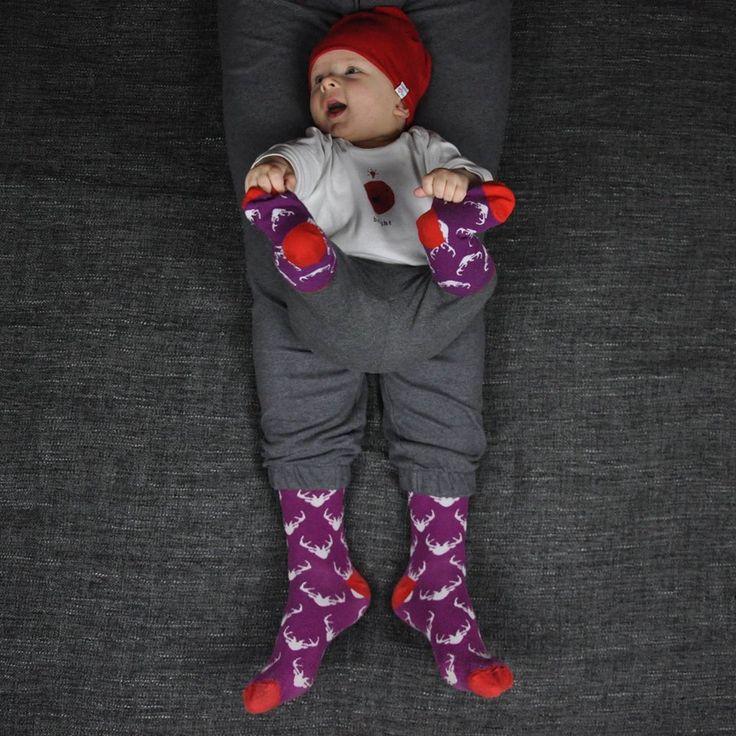 Lovely violet socks for dad and son / Świetne fioletowe skarpetki dla taty i synka