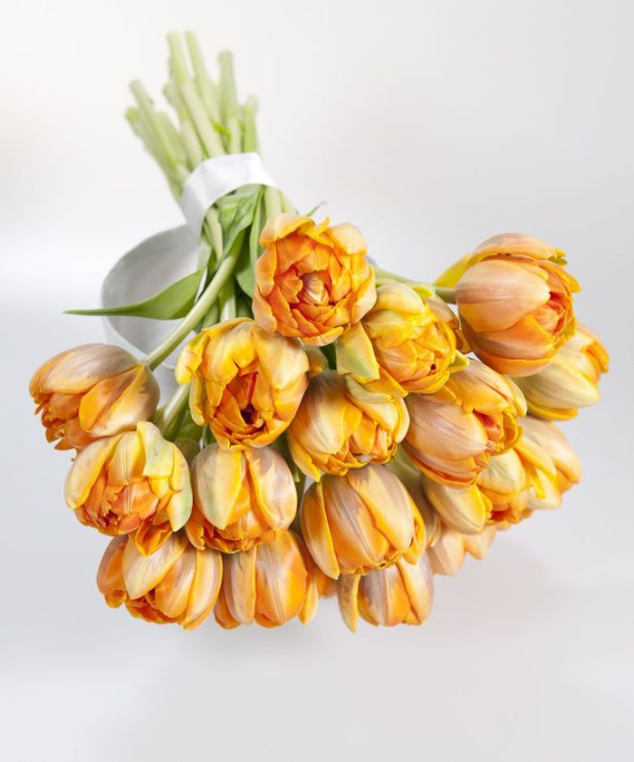 the color on these tulips, mixed with some solids would look nice