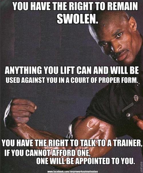 Funny Gym Meme Tumblr : Best fitness humor workout jokes images on pinterest