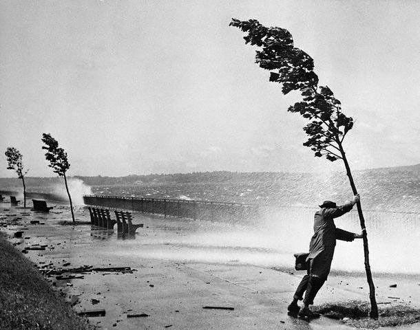 Stanley Hall,  Hurricane Carol, August 31, 1954. Brooklyn, New York