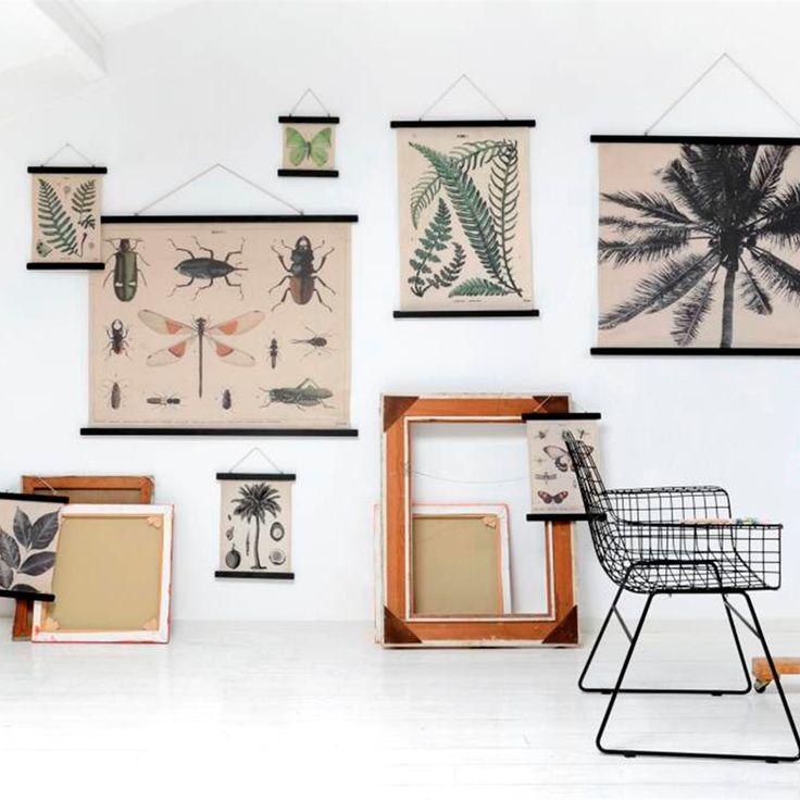 Schoolposter Insecten XL | Posters | Sissy-Boy Online store