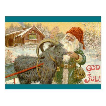 Jultomten Feeds Yule Goat a Cookie Postcard - postcard post card postcards unique diy cyo customize personalize