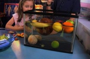 Sink or Float: good science experiments