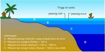 Zona pasang surut adalah daerah bagian pantai yg terletak antara batas surut terendah dan pasang tertinggi.