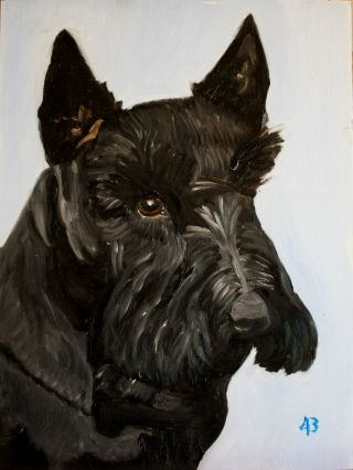 Former First Dog, Barney Bush, passes away at age 12 on February 1, 2013.  President George W. Bush painted this portrait of Barney.