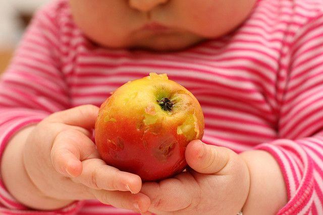 No quiere comer fruta ni verdura, ¿qué puedo hacer? , Si los niños no quieren comer frutas ni verduras, ¿qué podemos hacer? Os explicamos las claves para que los niños coman frutas y verduras sin problemas