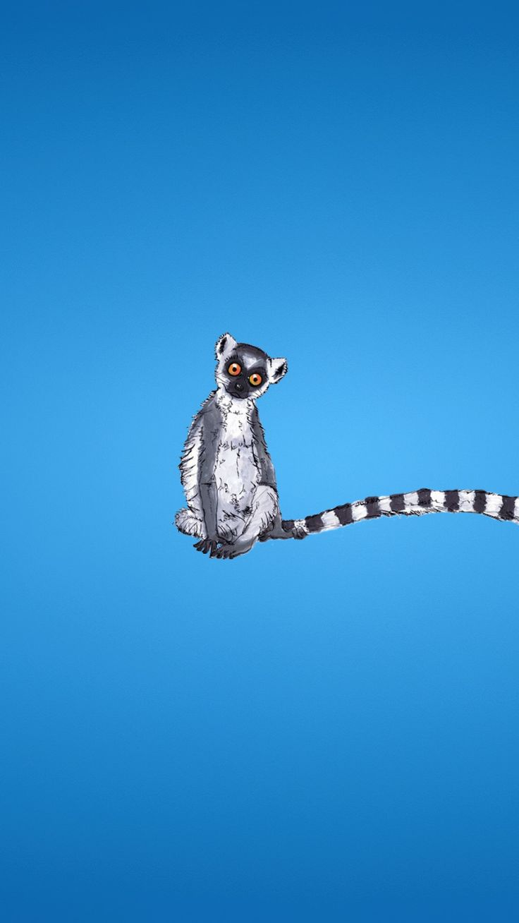 Lemur yes o o tap to see more animal minimalist - Phone animal wallpapers ...