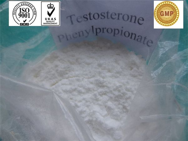 Testosterone Phenylpropionate/ bodybuilding / Testosterone Steroid Hormone / CAS 57-85-2 (420.59) - China Testosterone Phenylpropionate;T...