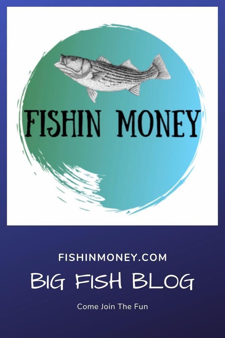 Pin On Fishing Striped Bass Tips