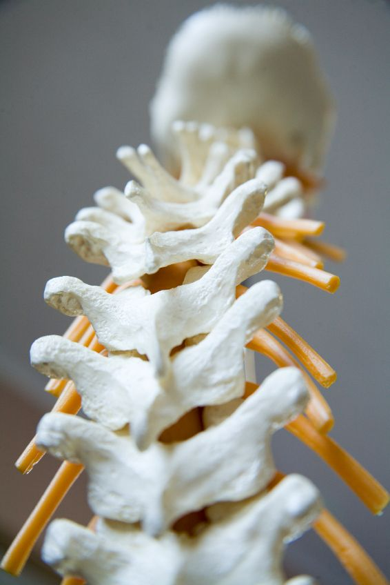 Osteopathy can help with neck pain and back pain, digestive problems, chronic pain, jaw pain and shoulder pain!