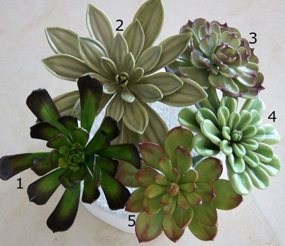 Succulents are a great addition to any cake style, modern, rustic, edgy or even classic. Their colour palette is beautiful; blue greens, greys ,