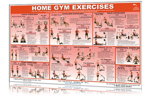 home gym workout exercises chart printable  work out