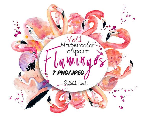 Check out this item in my Etsy shop https://www.etsy.com/ru/listing/530404259/flamingo-clipart-pink-flamingo-flamingo