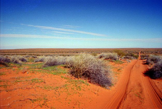 Travellers be warned -- hone your preparation skills before venturing into the Simpson Desert, in Australia. An impressive landscape, but an unforgiving one.