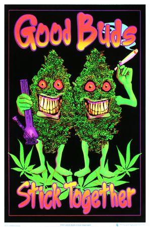 Good Buds Stick Together Pot Marijuana Blacklight Poster Print Blacklight Poster at AllPosters.com
