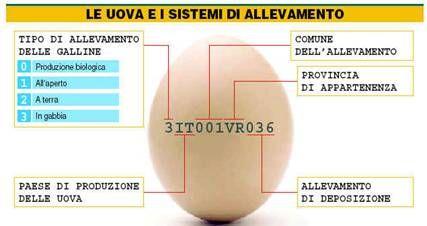 Conosci le tue uova?
