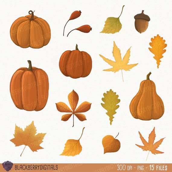 Fall Clipart Set fall clip art images fall by BlackberryDigitals