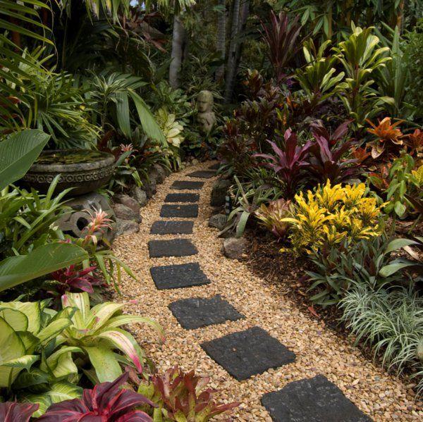 allée de jardin et plantes exotiques