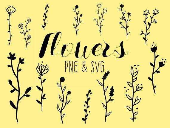 Flowers Clipart Hand Drawn Flowers Doodle Clipart Rustic Drawn