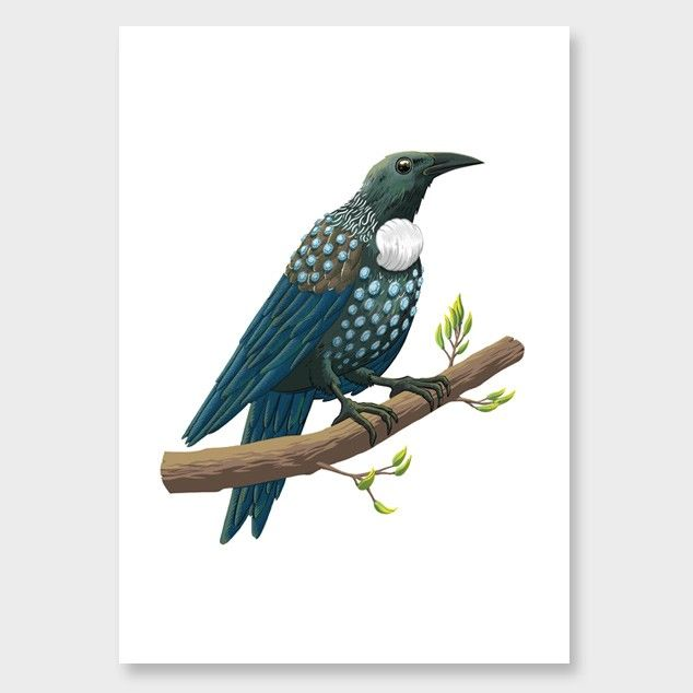Probably Forever Tui Art Print by Toby Morris