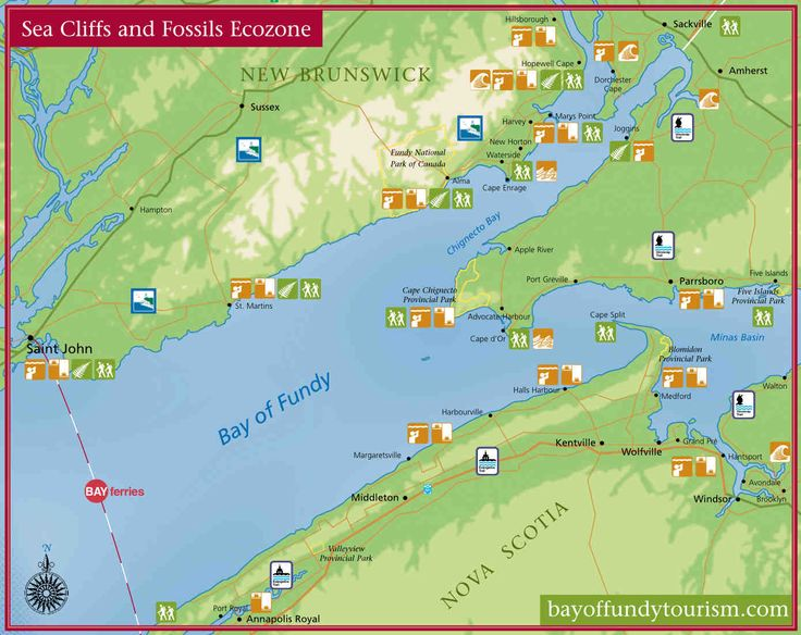 Map of the sea cliffs and fossils ecozone