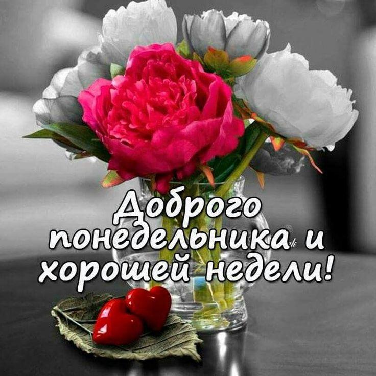 Открытки доброе утро удачного понедельника