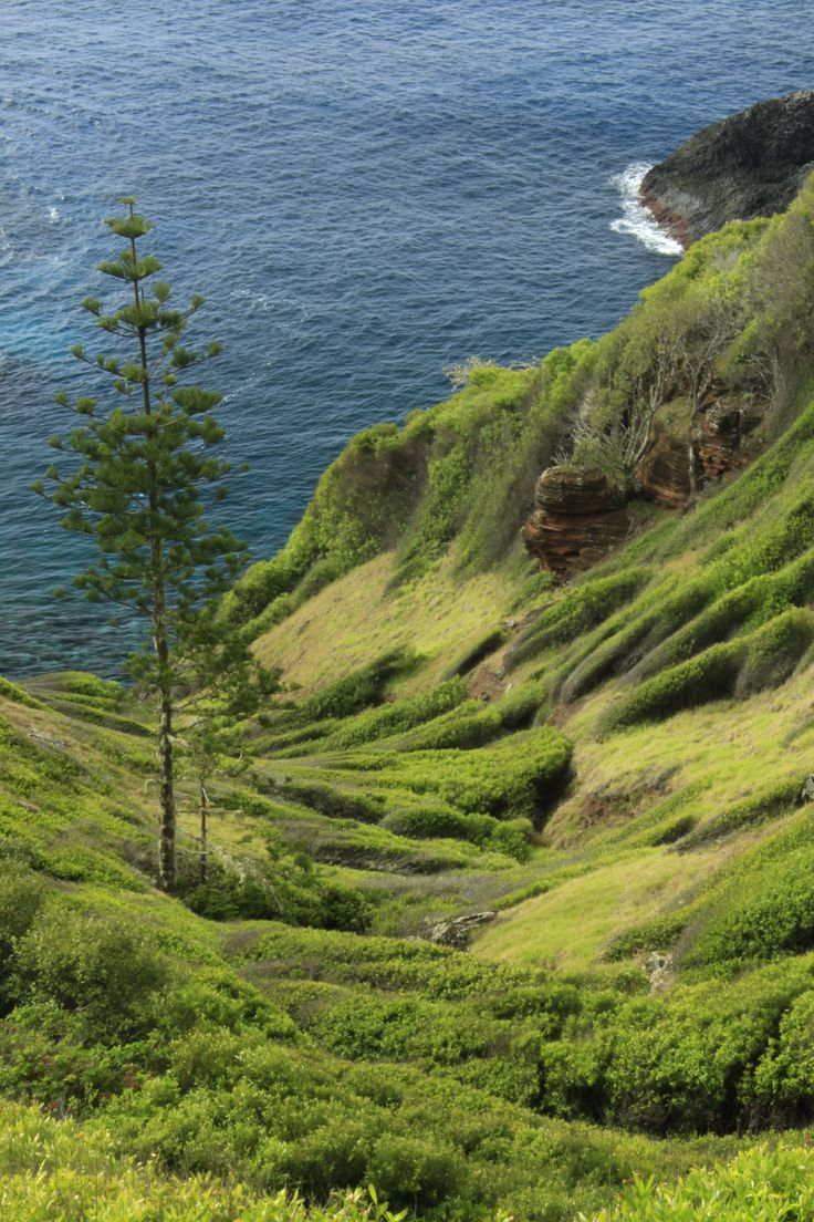 Land and Sea, Norfolk Island