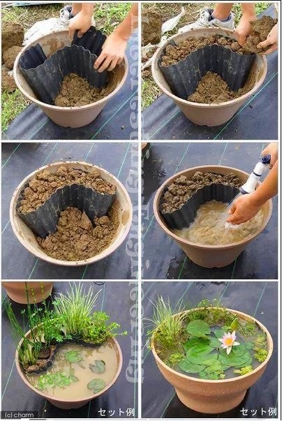 Recycle.  Ideas for the yard :3