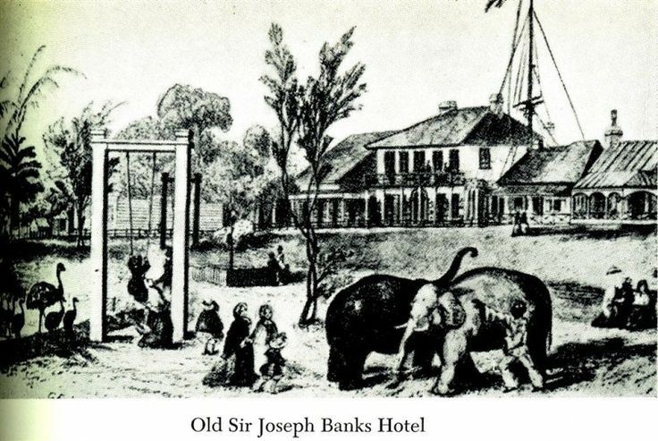 old Sir Joseph Banks Hotel c 1860.  The zoo opened in 1850...  a full history of the zoo here: http://www.rahs.org.au/history-resources/the-first-zoo/