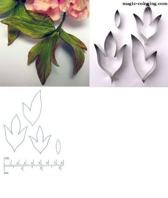 MAGIC-COLOREAR | esqueleto flor del Peony