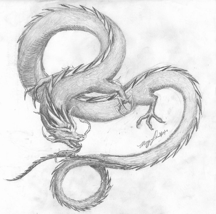 Chinese dragon by Wulfheart101.deviantart.com on @deviantART