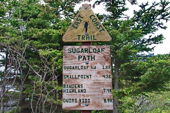 Hiking the Sugarloaf Path on the East Coast Trail, Newfoundland