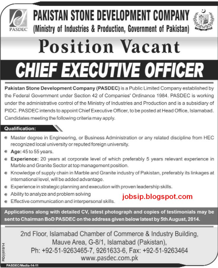 Jobs in Pakistan Chief Executive Officer Required in Government - chief executive officer job description
