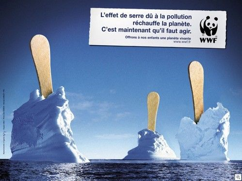WWF and SAFE