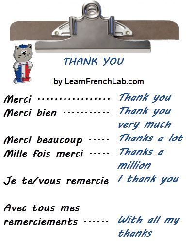 Learn different ways to say Thank You in French according to the situation you'll encounter with Video lesson.