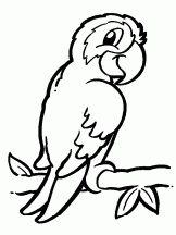 Coloriage Animaux et nature sur Hugolescargot.com