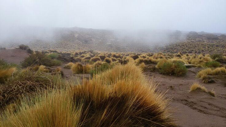 Baja brava,  El tatio.  San Pedro de Atacama