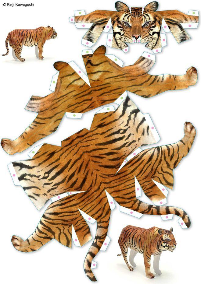 модели из бумаги схемы животные: 18 <em>бумаги</em> тыс изображений найдено в Яндекс.Картинках