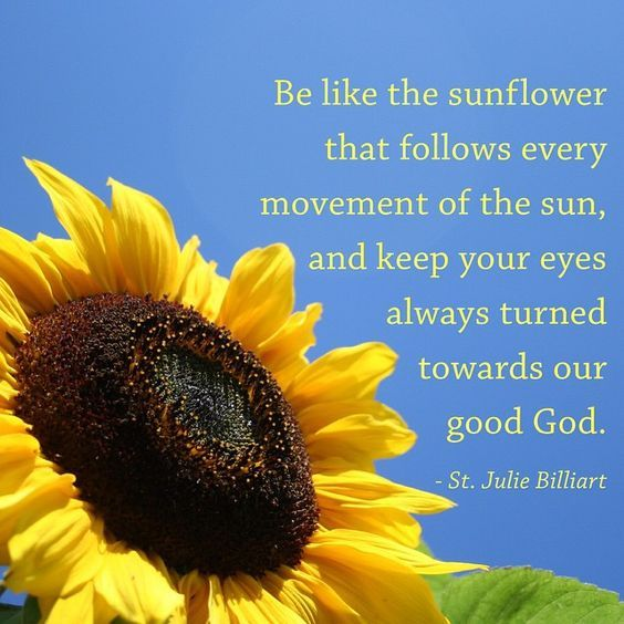 """Quote of the Day – April 8 #pinterest """"Be like the sunflower that follows every movement of the sun and keep your eyes always turned towards our God."""" ~~~~~ St Julie Billiart ~~~~~ (Saint of the Day)  Awestruck Catholic Social Network"""