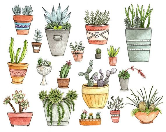Potted Succulents 85x11 Print by thelittlecanoe on Etsy, $20.00