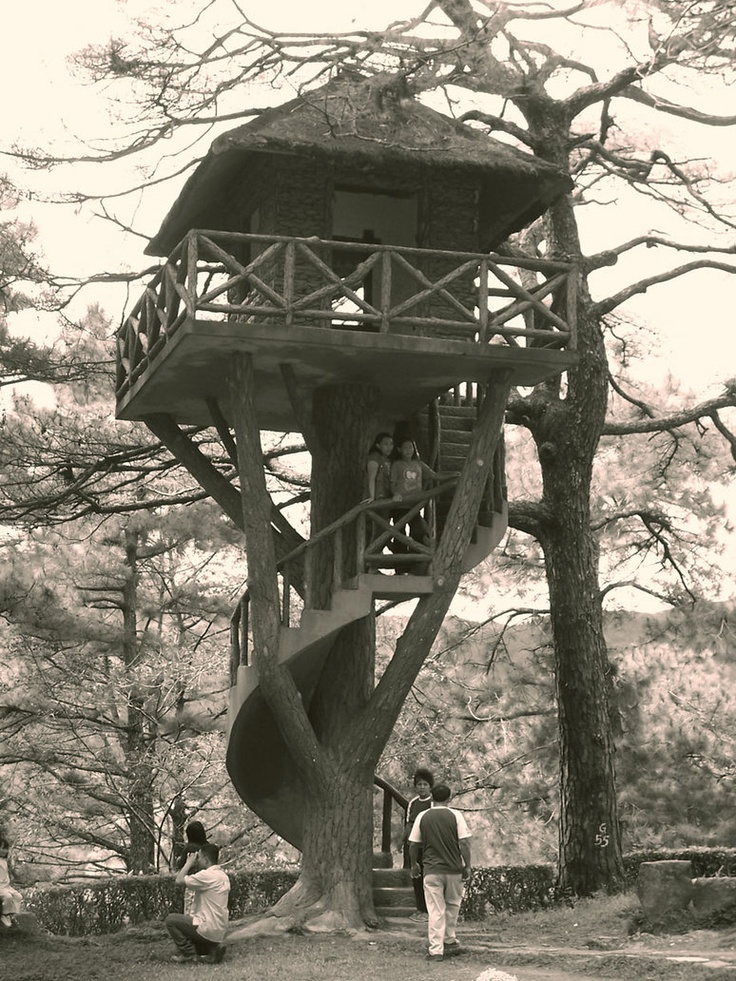 tree_house__ogan_by_porontongandsombrero